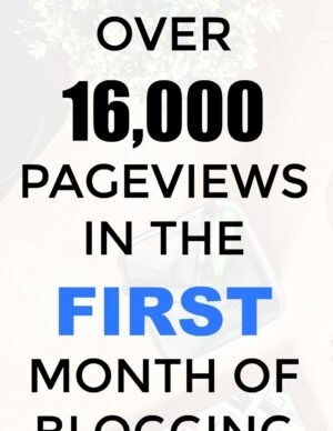How I got over 16000 pageviews in the first month of blogging