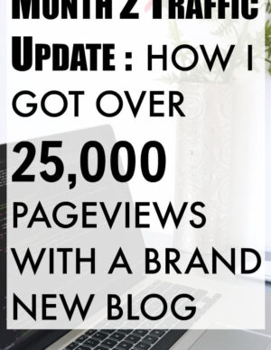 Month 2 Traffic Update: How I Got Over 25000 Page Views With A Brand New Blog