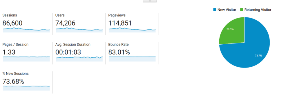 Google Analytics Screenshot