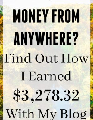Want To Make Money From Anywhere