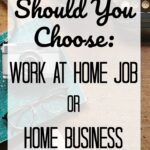 Which One Should You Choose: Work-at-Home Job or Home Business