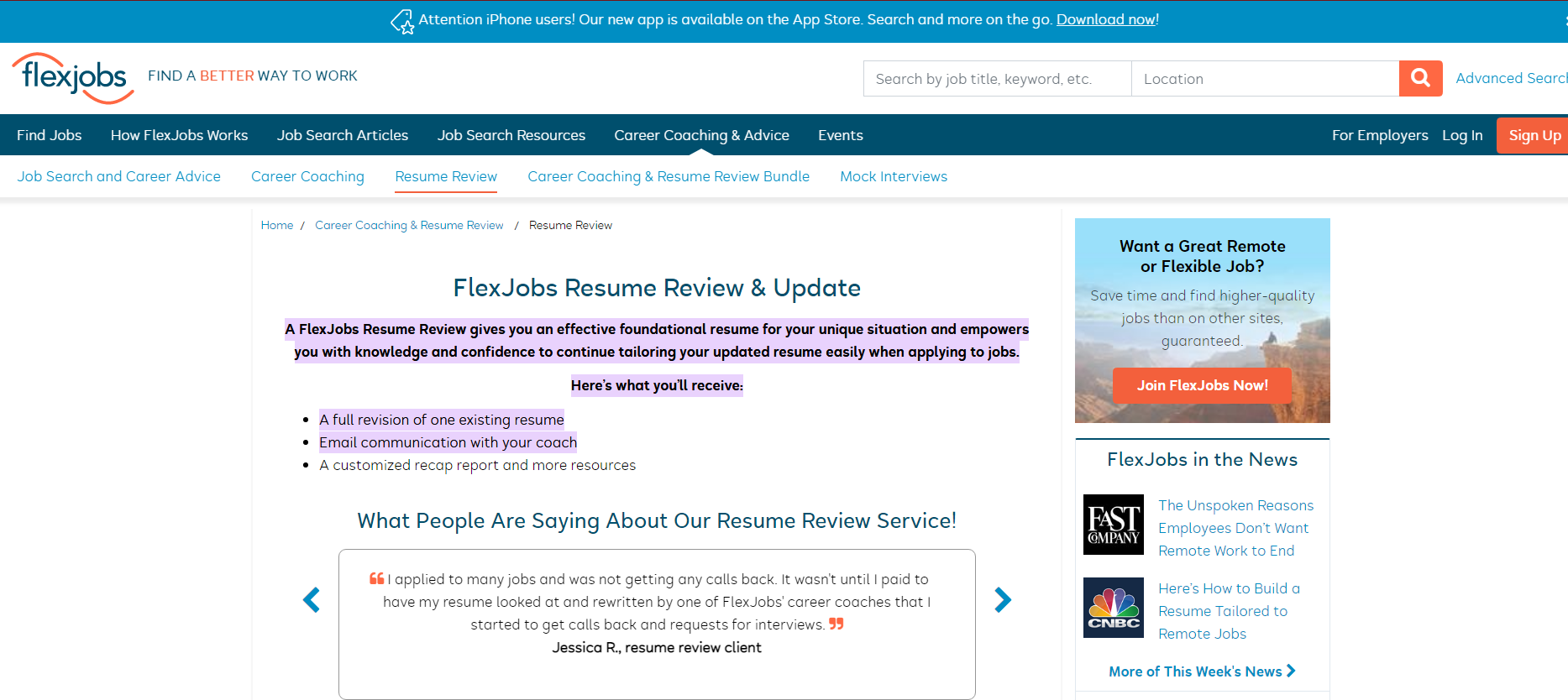 flexjobs resume review