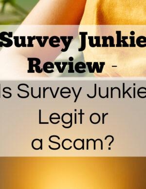 survey junkie review legit survey panel