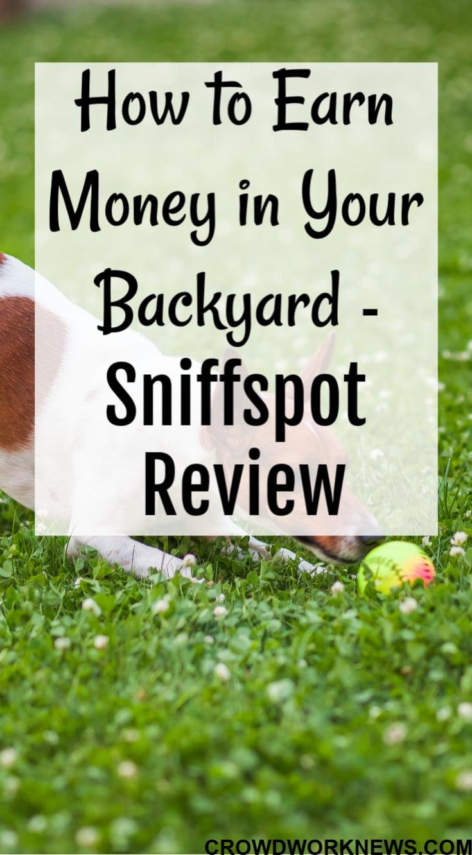 make money in your backyard