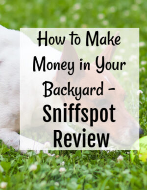 how to make money in your backyard